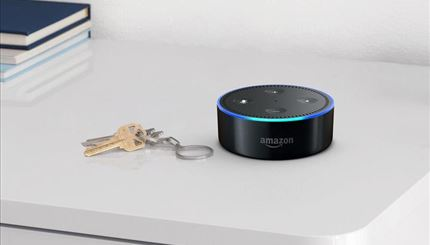Integrated Echo dot